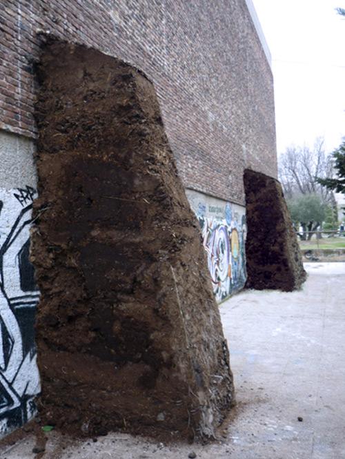 Estiércol Facultad Bellas Artes - Pierre Valls